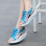 Harga Ocean New Wanita Olahraga Sandal Fashion Bernapas Dicungkil Kasual Sepatu Biru Intl Branded