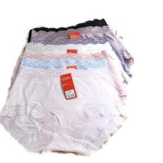 Harga Oleno Yadaili Midi Panty Multicolor 6 Pcs Paling Murah