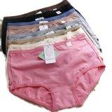 Kualitas Oleno Yadaili Midi Panty Multicolor 6 Pcs Oleno