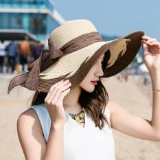 Pan Matahari Musim Panas Perempuan Matahari Topi Topi Topi Jerami Parka€™S Warna Diskon Indonesia