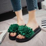 Harga Perempuan Baru Rajut Kupu Kupu Simpul Sandal Jepit Sendal Hijau Versi Upgrade Sepatu Wanita Sandal Wanita Other Baru