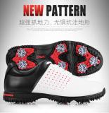 Jual Pgm Tahan Air Microfiber Sepatu Kulit Sepatu Golf Putih Toe Online Tiongkok