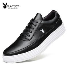 PLAYBOY Korea Fashion Style Sepatu Golden Goose Sepatu Sepatu Pemuda Sepatu Sepatu Pria (Hitam)