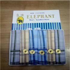 Sapu Tangan Pria Elephant Gajah - multi Warna Cerah