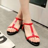 Jual Sandal Summer Sepatu Wanita Sederhana Pijakan Empuk Hitam Datar Merah Anggur Lengkap
