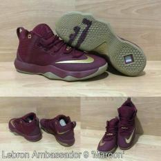 Sepatu Basket Lebron 9 Ambassador - 793Cbd