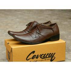 Miliki Segera Sepatu Formal Kerja Kantor Pantofel Chevany Rempel Original Shoes Brown