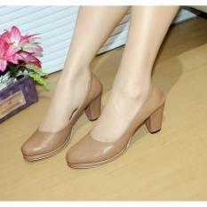 Beli Sepatu Pantofel Heels Aragon Kamel Nfz 10 Nyicil