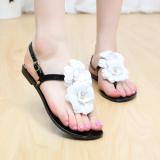Spesifikasi Sepatu Sandal Jepit Wanita Sol Datar Bunga Kristal Hitam Bagus