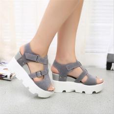 Gaya Musim Panas 2016 Platform Sandal Sepatu Wanita Tinggi Tumit Kasual Sepatu Membuka Toe Platform Gladiator Trifle Sandal Wanita Sepatu (grey)