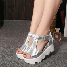 Summer Style 2016 Platform Sandals Shoes Women High Heel Casual Shoes Open Toe Platform Gladiator Trifle Sandals Women Shoes(Silver)