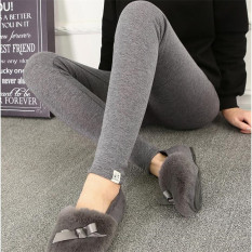 Tambah Beludru Musim Gugur Pakaian Luar Celana Panjang Wanita Hamil Legging (Kucing Standar Tambah Beludru Legging [Abu-abu abu-abu Dark])