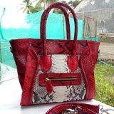 Toko Tas Celine Kulit Ular Python Asli Elegan Dan Fashionable Berkualitas Terlengkap Di Jawa Tengah