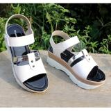 Jual Beli Velco Strap Wedges Sandal Hanna Marlee Amg 12 Putih Di Jawa Barat