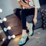 Diskon Veowalk Sepatu Bunga Bordir Wanita Casual Canvas Wedges Sepatu Mid Heel Mary Janes Tali Platform Biru Intl Veowalk Tiongkok