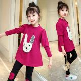 Harga Versi Korea Dari Gadis Baru Anak Anak Musim Gugur Ungu Yg Bagus