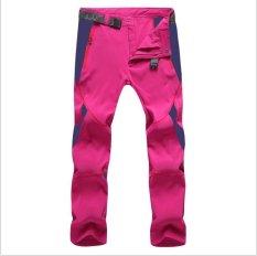 Harga Kemenangan Pria Dan Wanita Olahraga Luar Ruangan Sport Riding Climbing Stretch Celana Cepat Kering Celana Unisex Rose Intl Termurah