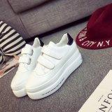 Harga Wanita Fashion Olahraga Sepatu Kasual Bernapas Sepatu Meningkatkan Tinggi Rekreasi Sepatu Putih Hitam Intl Di Tiongkok