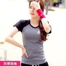 Wanita Yoga Kemeja Pendek Berlengan Latihan Pakaian Wanita T-shirt Jaket Slim Cepat Kering Menjalankan Kebugaran T-shirt Grey dengan Black- INTL