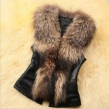 Ongkos Kirim Womens Faux Fur Vest Jacket Sleeveless Musim Dingin Body Warm Coat Rompi Gilet Intl Di Tiongkok