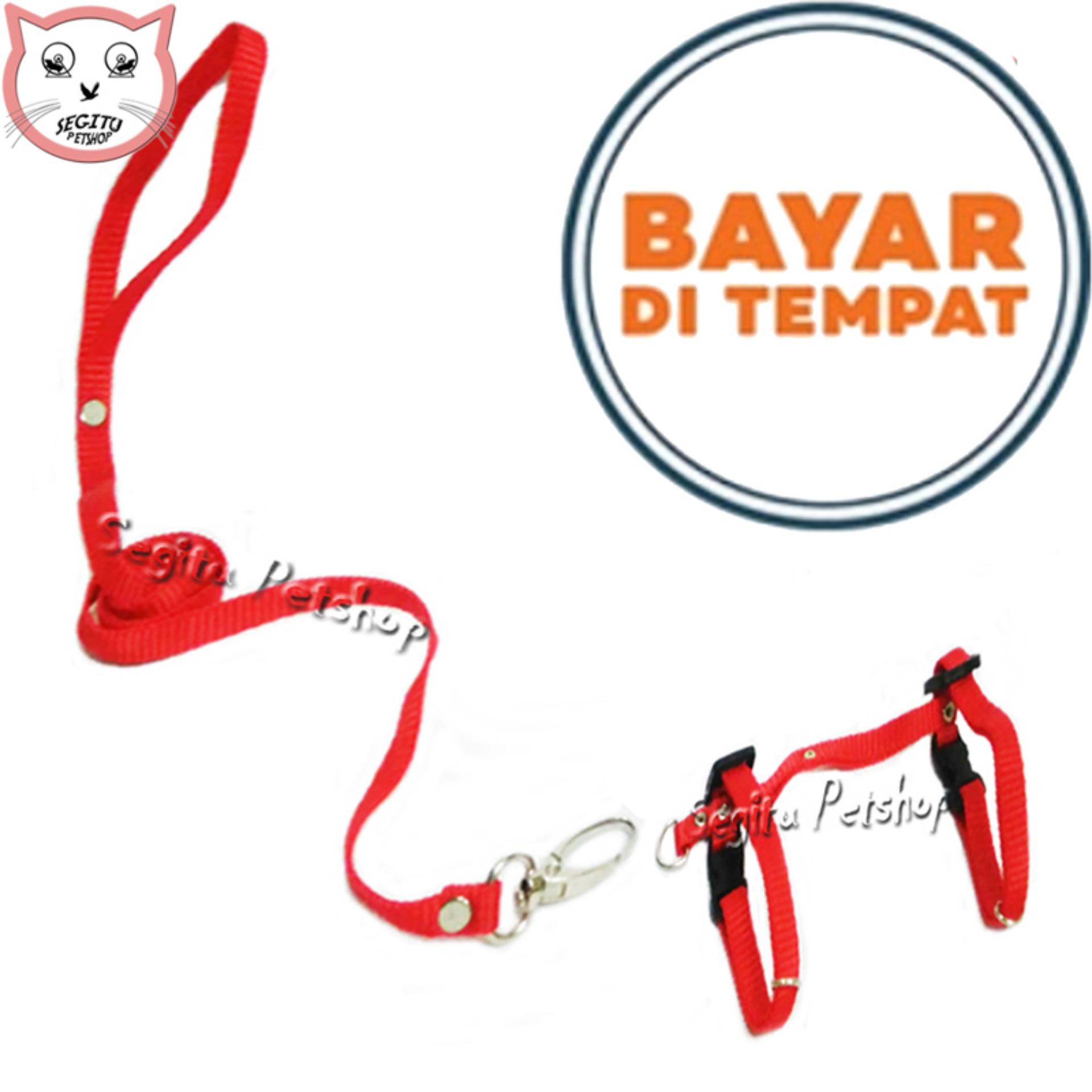 Harness H Hernes Kucing Musang Anjing By Widi Pet House.
