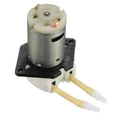 Jual Cepat 1X Dc 12 V Mini D2 Peristaltik Dosing Pump Motor Untuk Lab Water Analitis Cair Intl