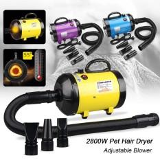 2800W Pet Fur Dryer Grooming Blower Dog Cat Hairdryer Blaster Heater Low Noise Yellow - intl