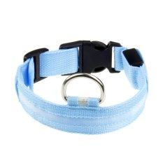 Adjustable Nylon LED Hewan Peliharaan Anjing Kucing Keselamatan Di Malam Hari LEDFlashingLight-up Collar-Putih Cahaya Biru Langit- INTL