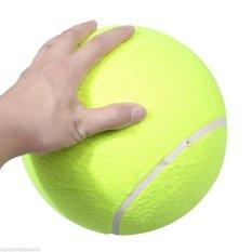 Big Giant Pet Dog Puppy Bola Tenis Pelempar Chucker Launcher Playtoy Outdoor-Intl