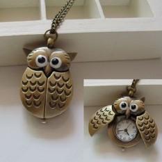 Bluelans® Perunggu Slide Owl Pocket Pendant Watch Kalung