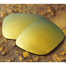 Toko Bott Replacement Lenses For Holbrook Sunglasses Polarized 24K Golden Intl Terlengkap Tiongkok