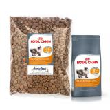 Review Catfood Royal Canin Hair Skin Repack 1Kg Royal Canin Di Banten