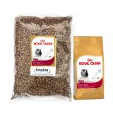 Review Pada Catfood Royal Canin Kitten Persian Repack 1Kg