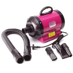 Kucing Anjing Hewan Peliharaan Perawatan Rambut Dryer Blow Blaster Pengering Rambut Blower 2800 W W/3 Nozzle Pink-Intl