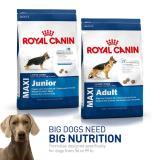Diskon Dogfood Royal Canin Maxi Junior 15Kg Akhir Tahun