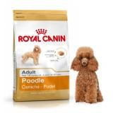 Harga Dogfood Royal Canin Poodle *d*lt 1 5Kg Royal Canin Banten