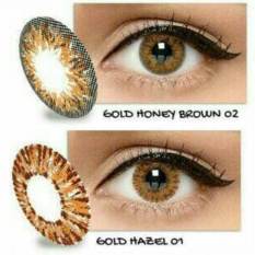 Exoticon X2 ice gold silver softlens - gold hazel 01 (normal)
