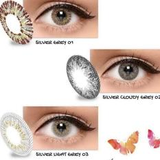 Exoticon X2 ice gold silver softlens- light grey 03 (normal)