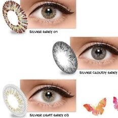 Exoticon X2 ice gold silver softlens-silver grey 01 (normal)