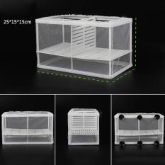 Jual Fish Breeding Aquarium Box Net Dengan Papan Isolasi Inkubator Hatchery L Ukuran Intl Grosir