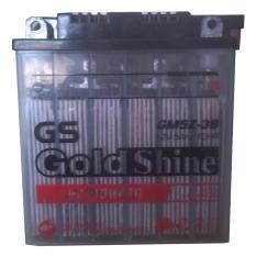 Gold Shine Aki Kering GM5Z-3B-BS MF