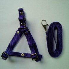 Harness Y uk S + Leash Ungu Tua untuk Kucing, Kelinci, Musang, Puppy Small breed