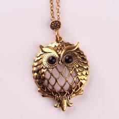 Hequ New Design Antique Gold Chain Pendant Necklace Magnifying Glass Necklace Owl Pendant Necklace Retro Bijoux For Gold - intl
