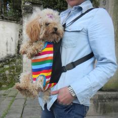 Harga Pet Berkualitas Tinggi Backpack Bag Chest Pack Anjing Carrier Kakinya Keluar Frontstyle Hewan Peliharaan Persediaan Intl Seken