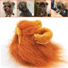 Panas Penjualan Topi Pet Kostum Singa Kucing Teguran atau Halloween Berdandan With Your Ears Topi Pet-Emas-Internasional