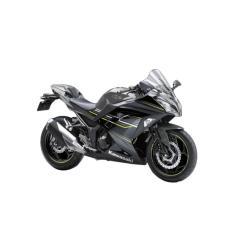 Kawasaki Ninja 250 ABS SE LTD Sepeda Motor - Grey  (OTR BOGOR)