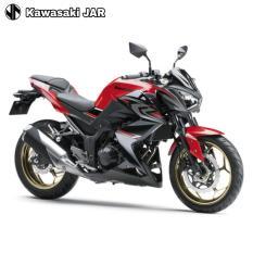 Kawasaki Z 250 ABS