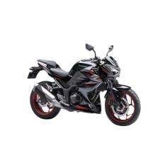 Kawasaki Z250 ABS Sepeda Motor - Black (OTR JADETABEK)
