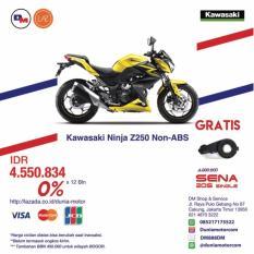 Kawasaki Z250 NON ABS