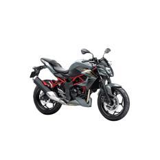 Kawasaki Z250SL ABS Sepeda Motor - Silver (OTR JADETABEK)